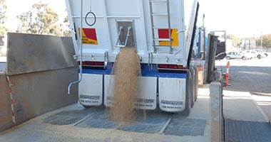 Grain Procurement
